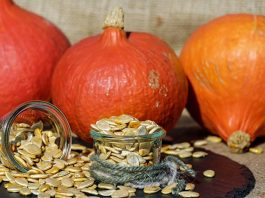 pumpinks seeds fall halloween
